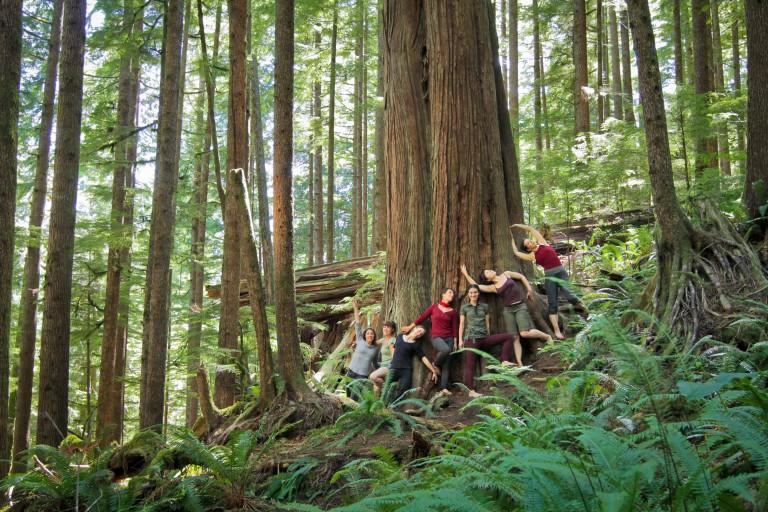 cast + crew at Avatar Grove